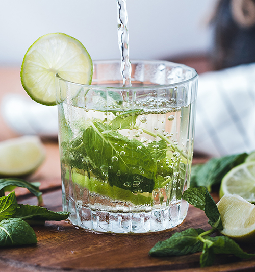 muddled-mint